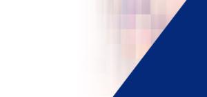 Virtual Meetings - Conference Webacsting Services - ICV Digital Media, Inc